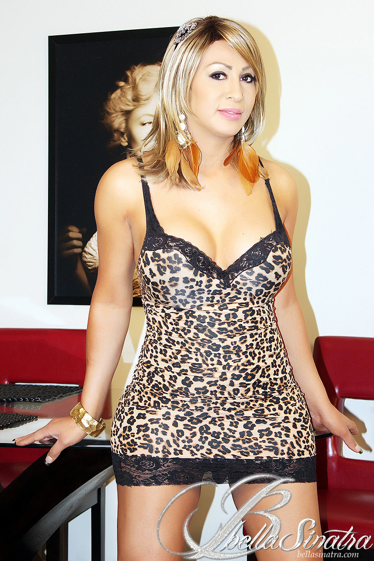 New And Fresh Transsexual In Animal Print Undies Gets Naked