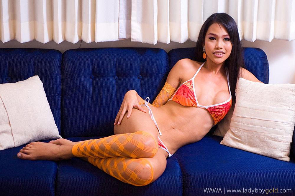Provoking Katoey Wawa Shows Us Us Her Ass In A Petite Orange Bikini