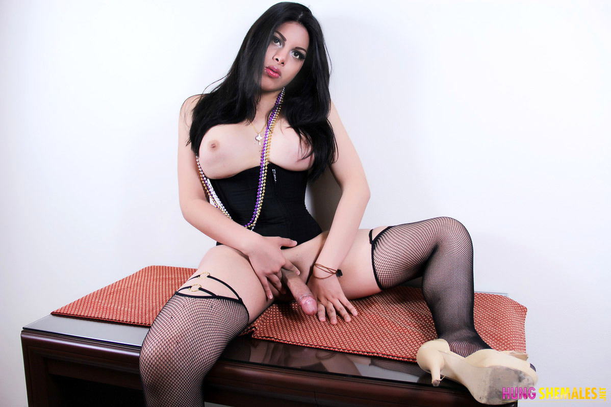 Teen Brunette Shemale With A Magnificent Cock