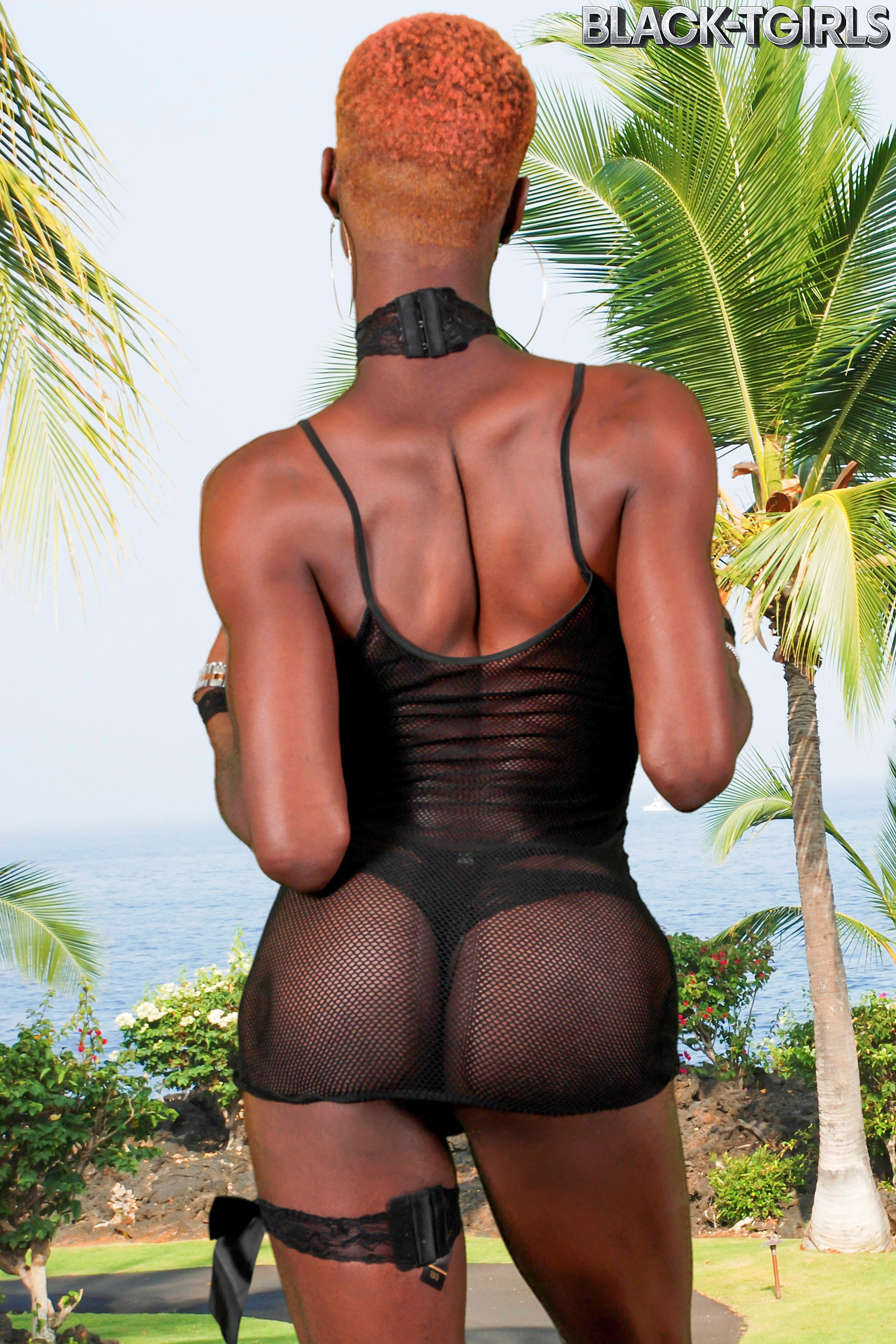 Traci Handler Is A Fantastic Black TGirl With An Perfect Body